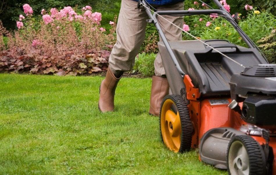 Mand der slår græs i en flot have
